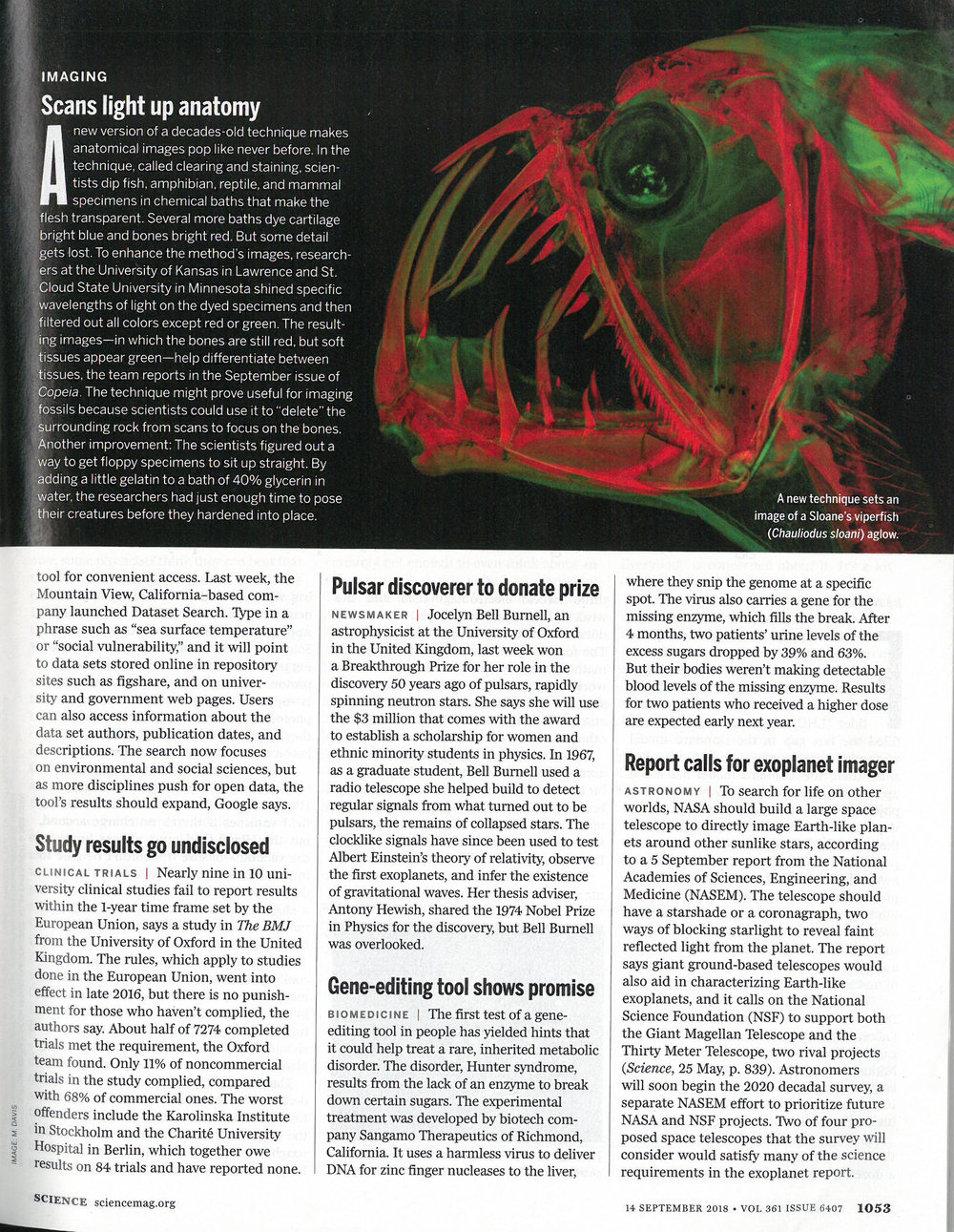 "Guterman, L.  Science . ""Scans light up anatomy."" September 14th, 2018 (Print Magazine)"