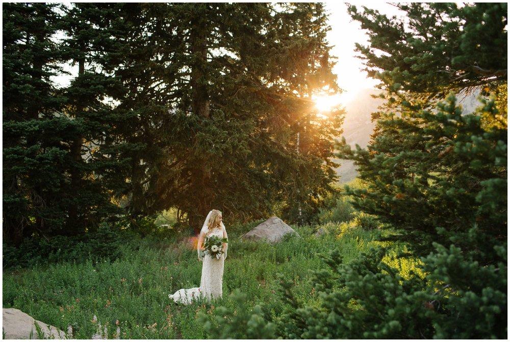 Jamie Tervort Photography, Albion Basin, Utah Bridal Photographer