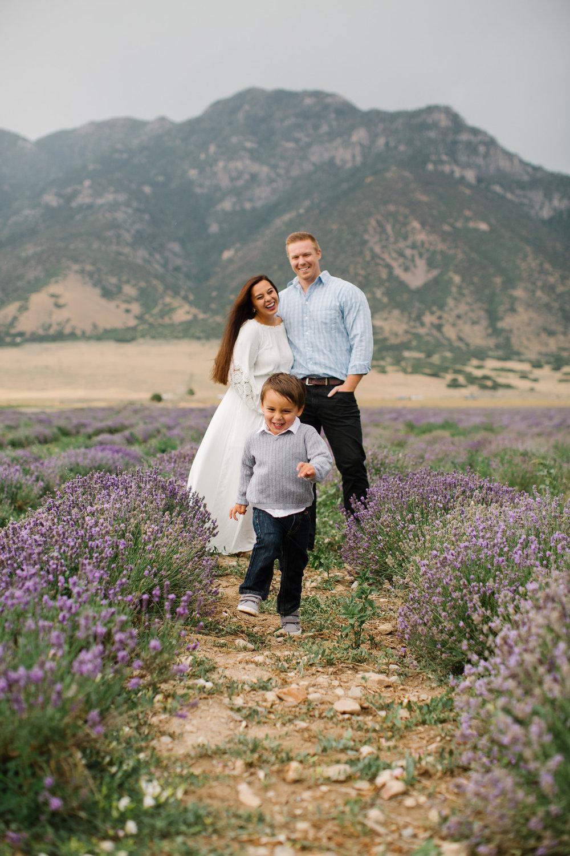 LavenderDreams_Anderson_JTP2018_003.jpg