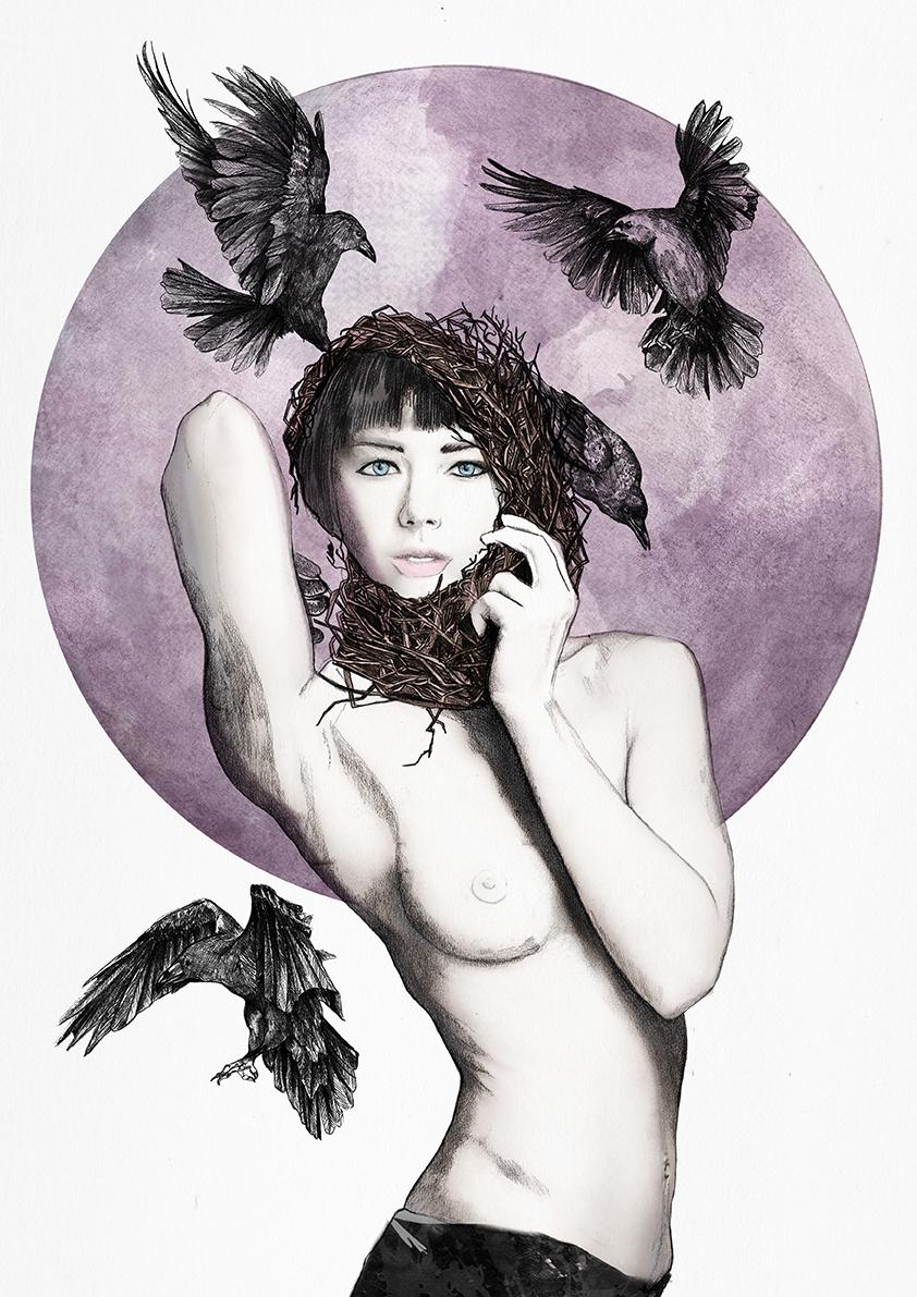 Raven's nest.jpg