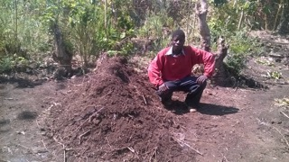 The Chief from Kalulu is a huge supporter of our Farming Training, our gospel message, and the lifestyle guidance we offer.  He has been composting and improving his plots.  The demonstration plot we use was his donation, and he insists we continue to train him and his village.