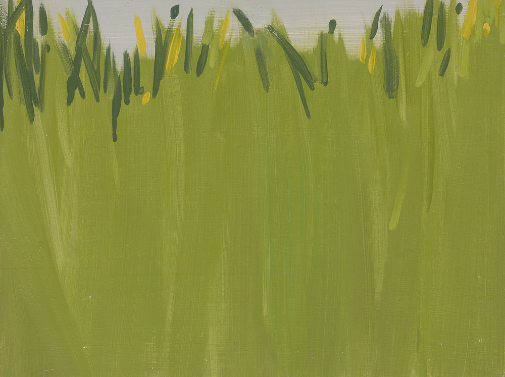 Grass 2, oil on board, 30 x 40 cm