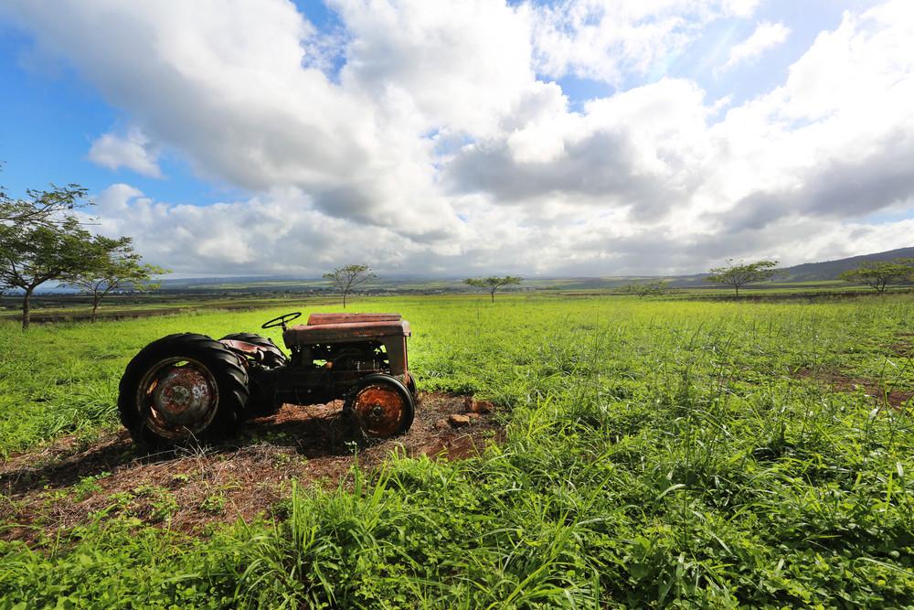 GMO CROP LAND_DUPOUNT PIONEER.jpg