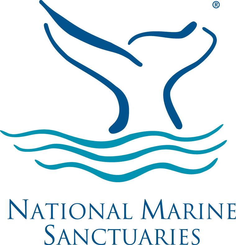NMS Logo_Color.jpg