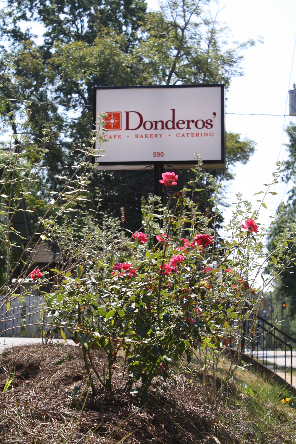 Beautiful Flowers at Donderos'