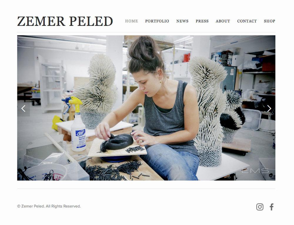 zemer_peled_website_for_web.jpg