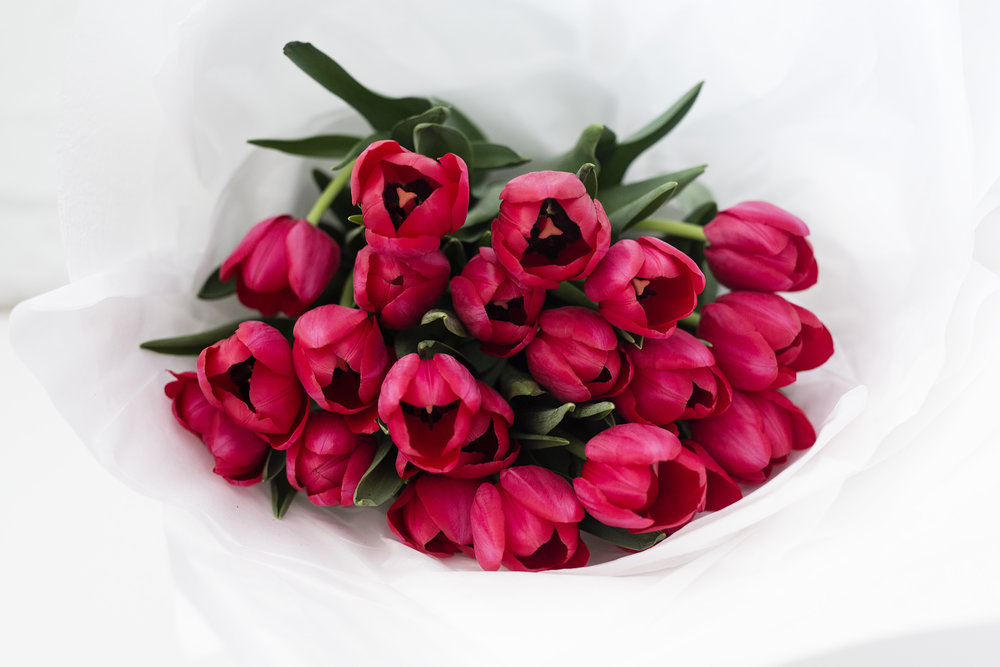 TULIPS EN MASSE   A MIX OF PINKS + RED TULIPS 20 STEMS   $55.00