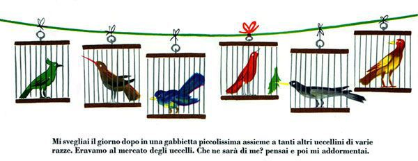 A spread from 'A tale of three little birds' by Bruno Munari.
