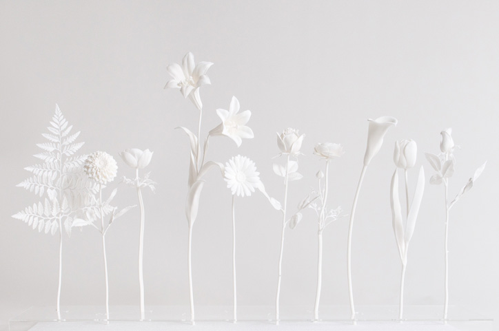 'Virtual Florist' are incredibly accurate replicas of naturally occuring flowers and plants created with rapid prototyping.     Each piece is 30 - 60cm high.