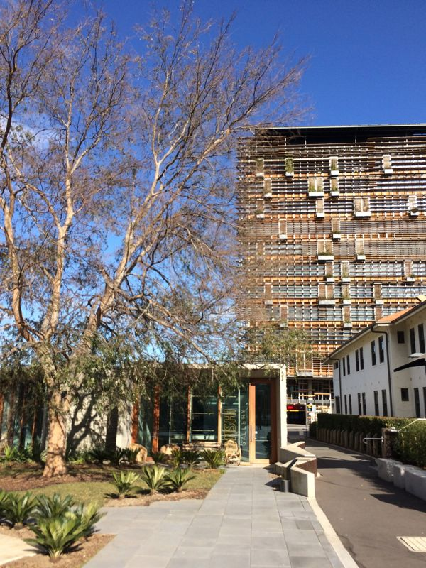 The commercial part of the building by Fender Kastalidis features 40km of blackout timber, and plants growing from suspended window boxes. Shown in the foreground is the NIshi Gallery.