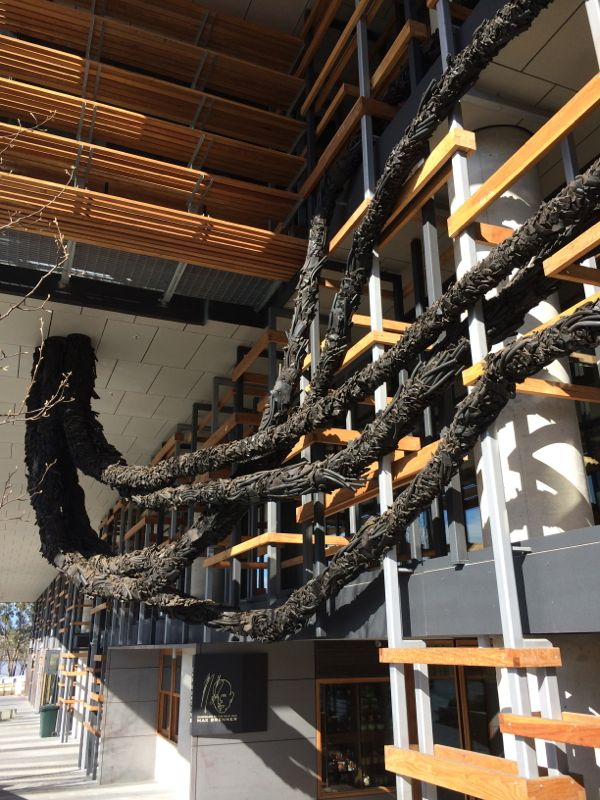 Steven Siegel's 'Carbon' sculpture is like a giant black wisteria vine growing through the eastern facade of the Nishi building.