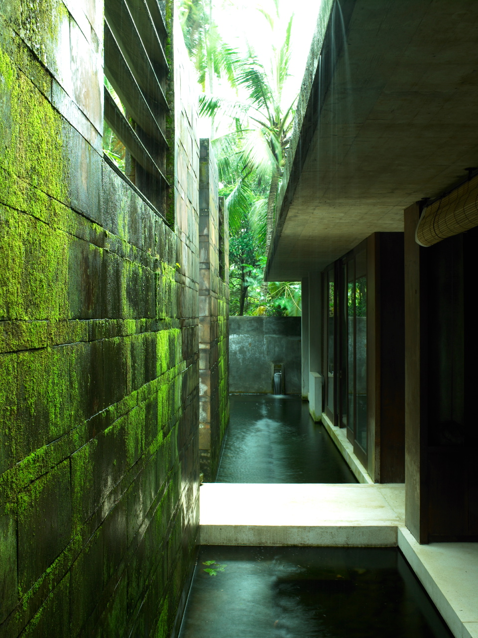 The tropical location of the Cheong Yew Kuan house in Ubud is accentuated by mossy stone and shallow ponds.