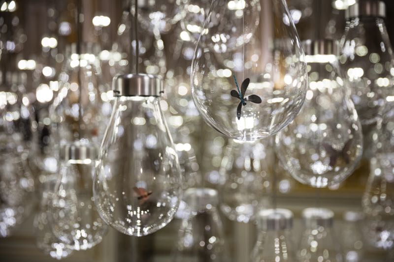A close up of the butterflies within Mischer'traxler's 'Curiosity Cloud' installation at the V&A. Photo Ed Reeve.