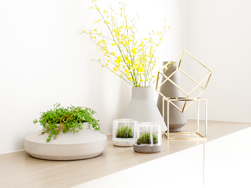 The micro moss gardens from Botanica seen in contact with ceramic vessels by  Milia Seyppel  for Karakter.