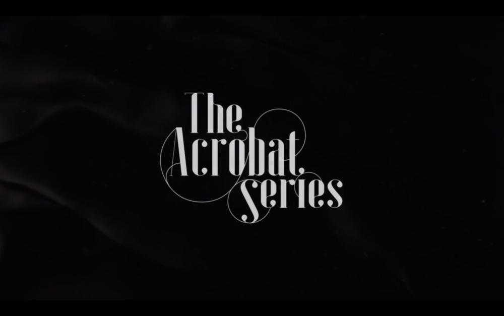 Acrobat Series.png