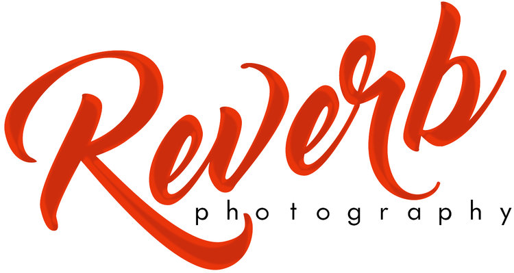 Unique Milwaukee Photographer - Reverb Photography