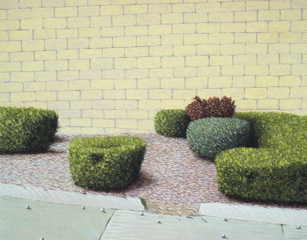 bushes.jpg