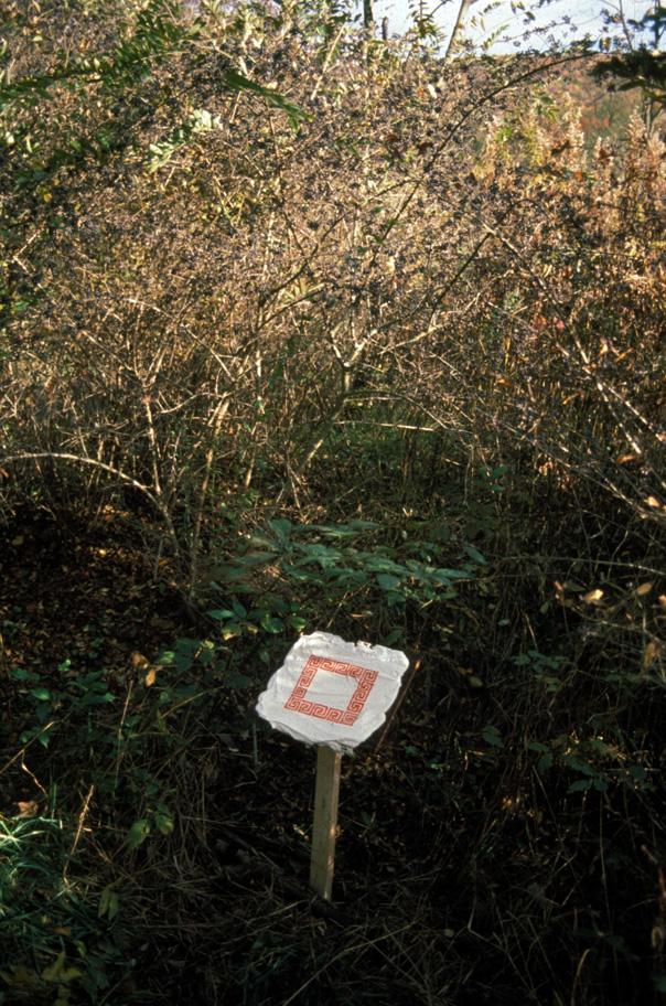 Mudlick maze, sign 4.jpg