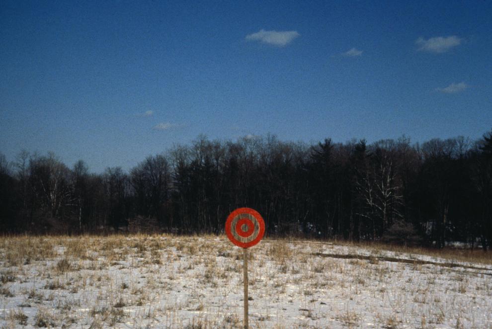 Mudlick target, web.jpg