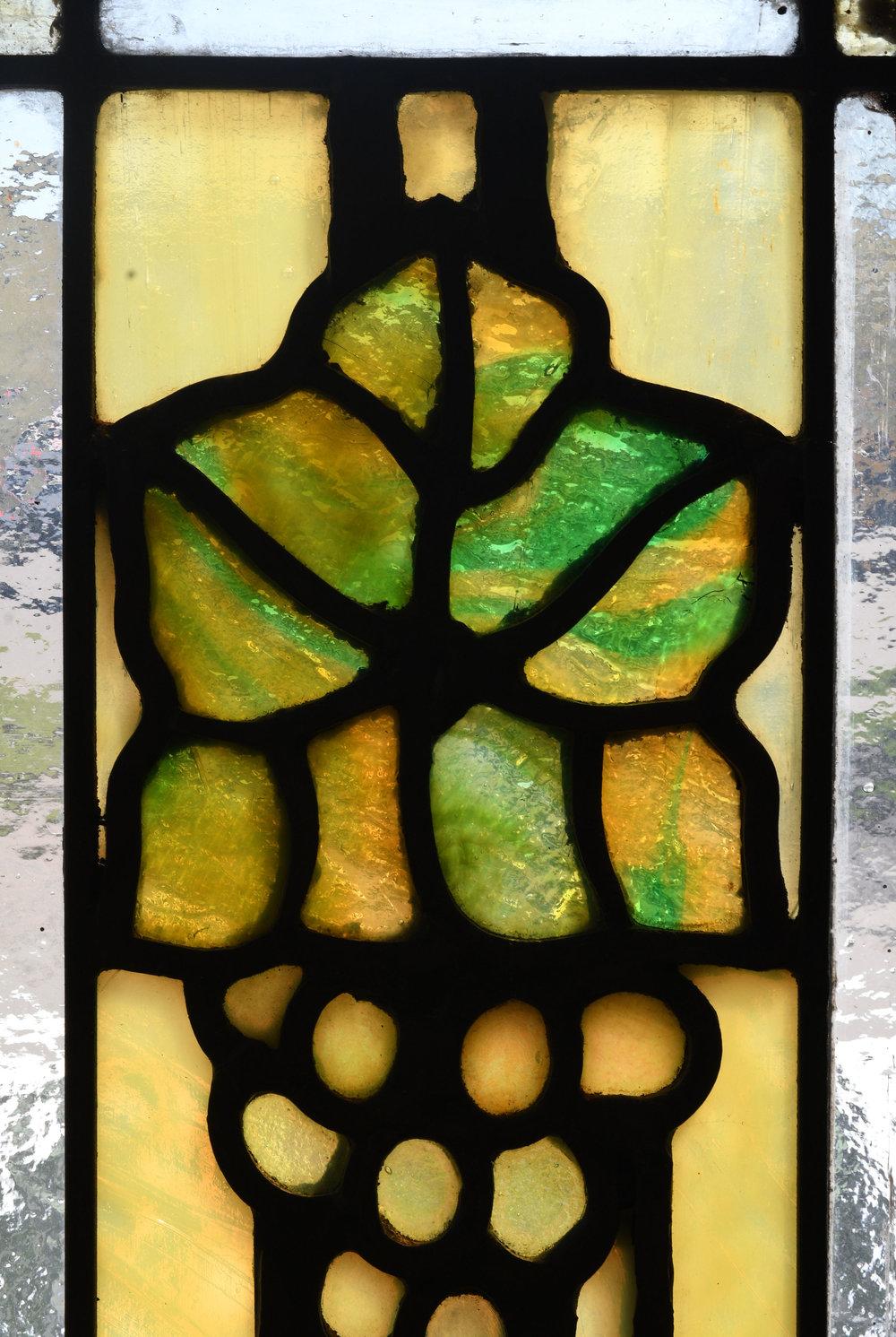47809-bradstreet-grape-leaves-windows-closeup-backlit.jpg