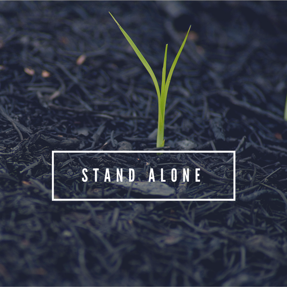 Stand alone SERMON IC.png
