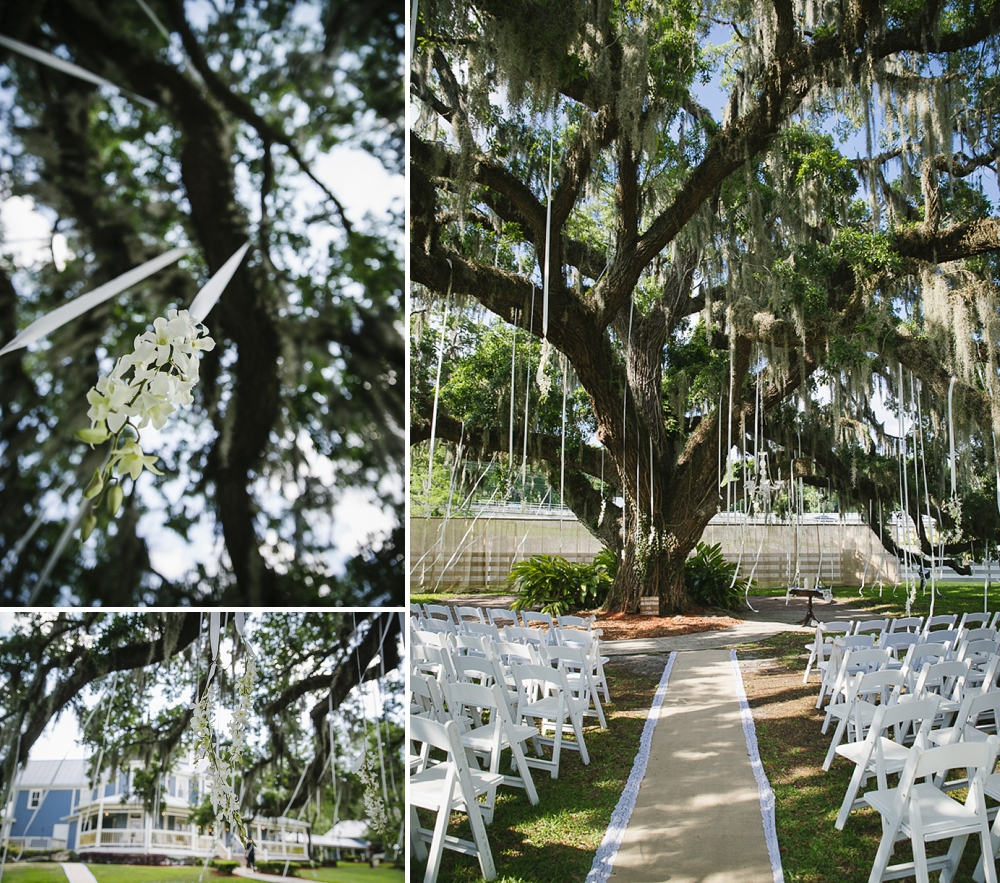 Highland Manor Wedding Oak Tree