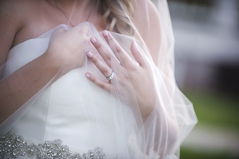 Romantic Wedding Veil Photo