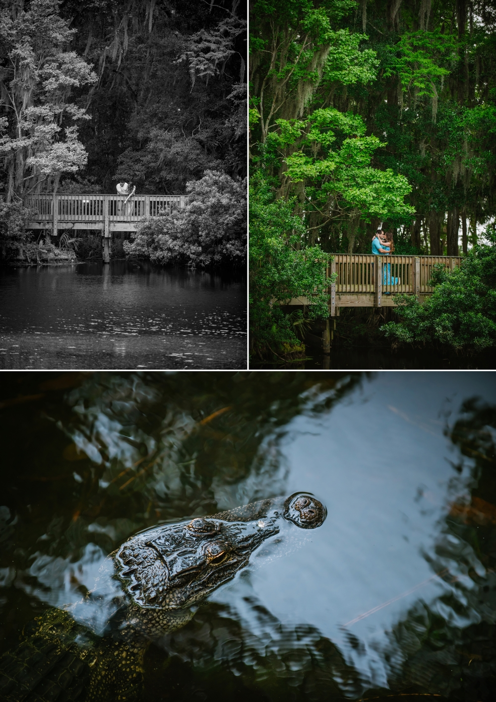 ashlee-hamon-photography-tampa-springs-outdoor-engagement_0002.jpg