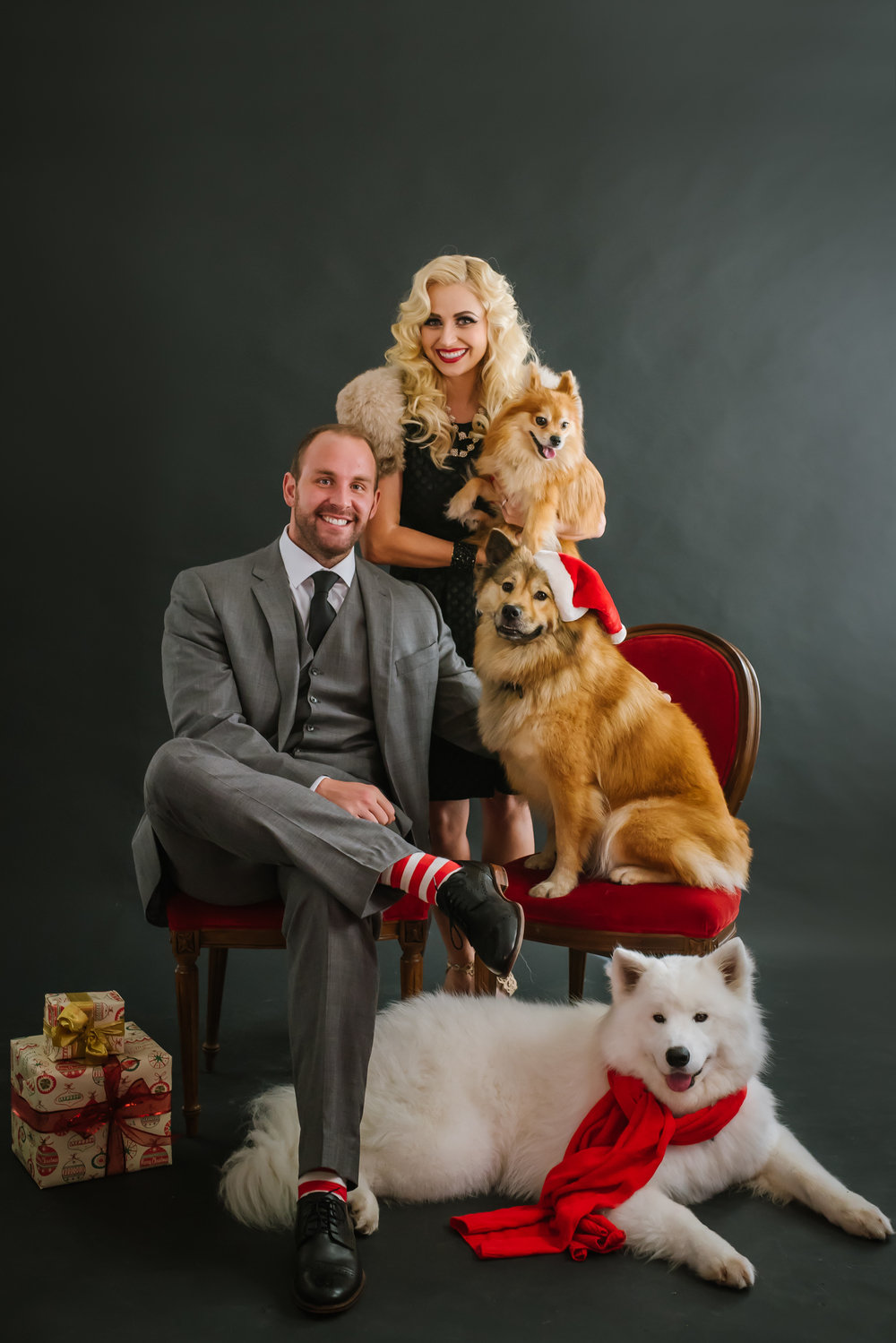 Then it was more pups at the studio for our holiday mini sessions!