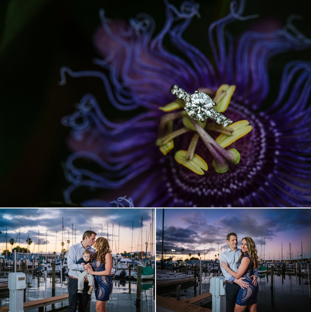 tampa-engagement-photographer-ashlee-hamon_0007.jpg