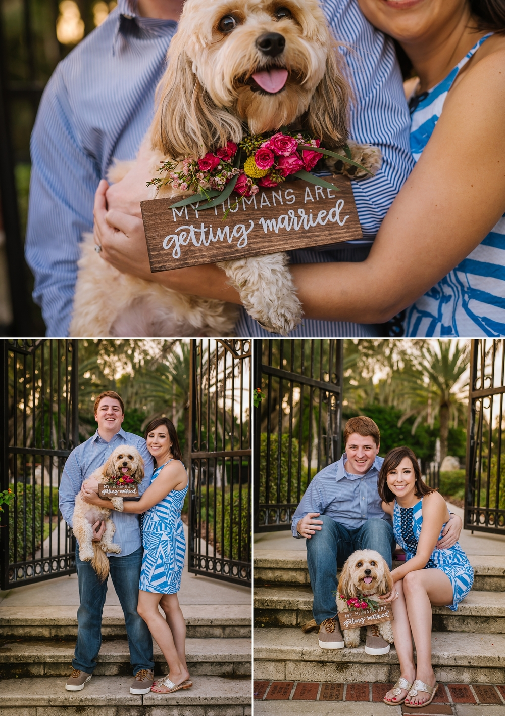 cute-waterfront-engagement-session-tampa-ashlee-hamon_0009.jpg