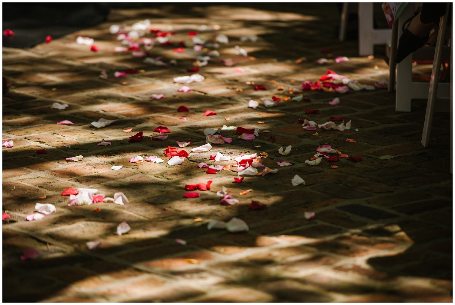 Sunken Gardens Wedding with Hawaiian Flare — Tampa Wedding ...
