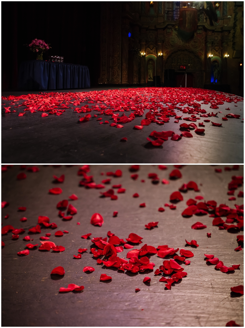 tampa-theater-romantic-surprise-proposal-red-roses-photographer_0001.jpg