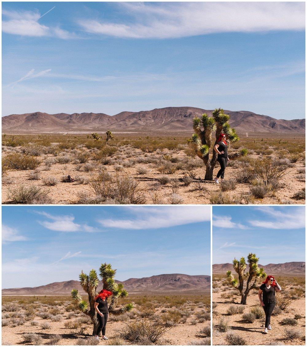 Seven-magic-mountains-vegas-desert-photography-wppi-2017_0012.jpg