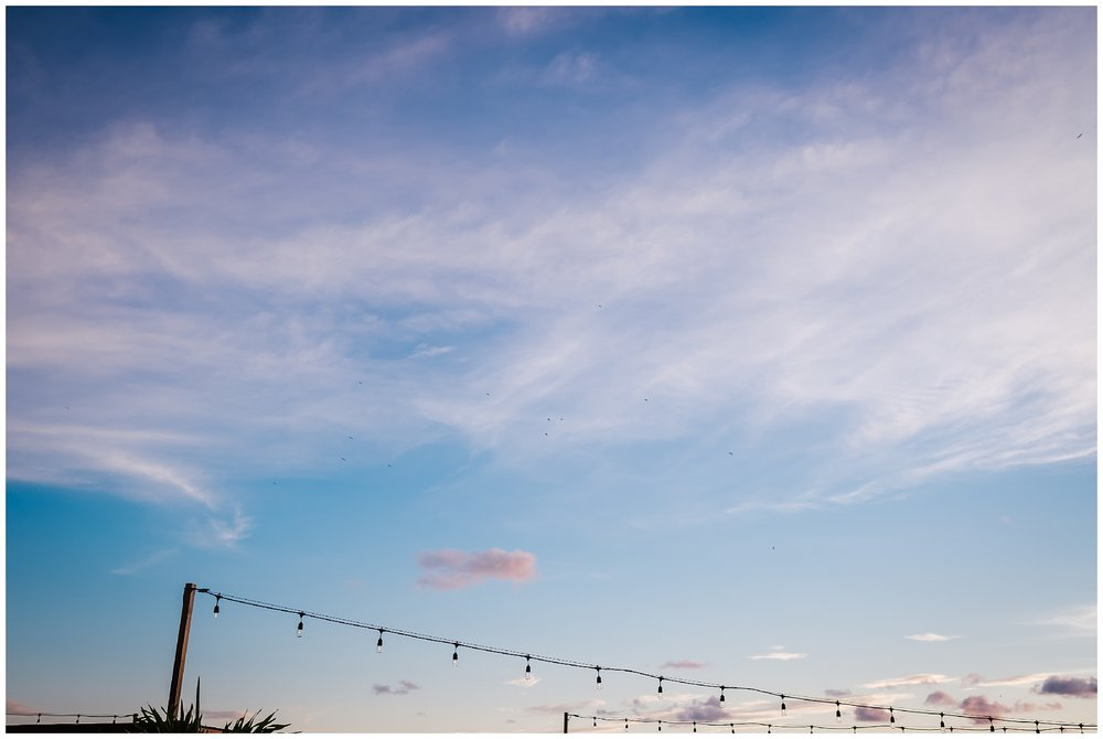 st-pete-wedding-photographer-hotel-zamora-rooftop-rose-gold_0051.jpg