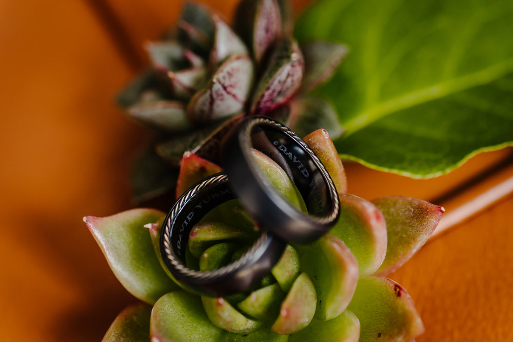 Tampa-Wedding-Photographer-Same-Sex-Modern-Succulents.jpg