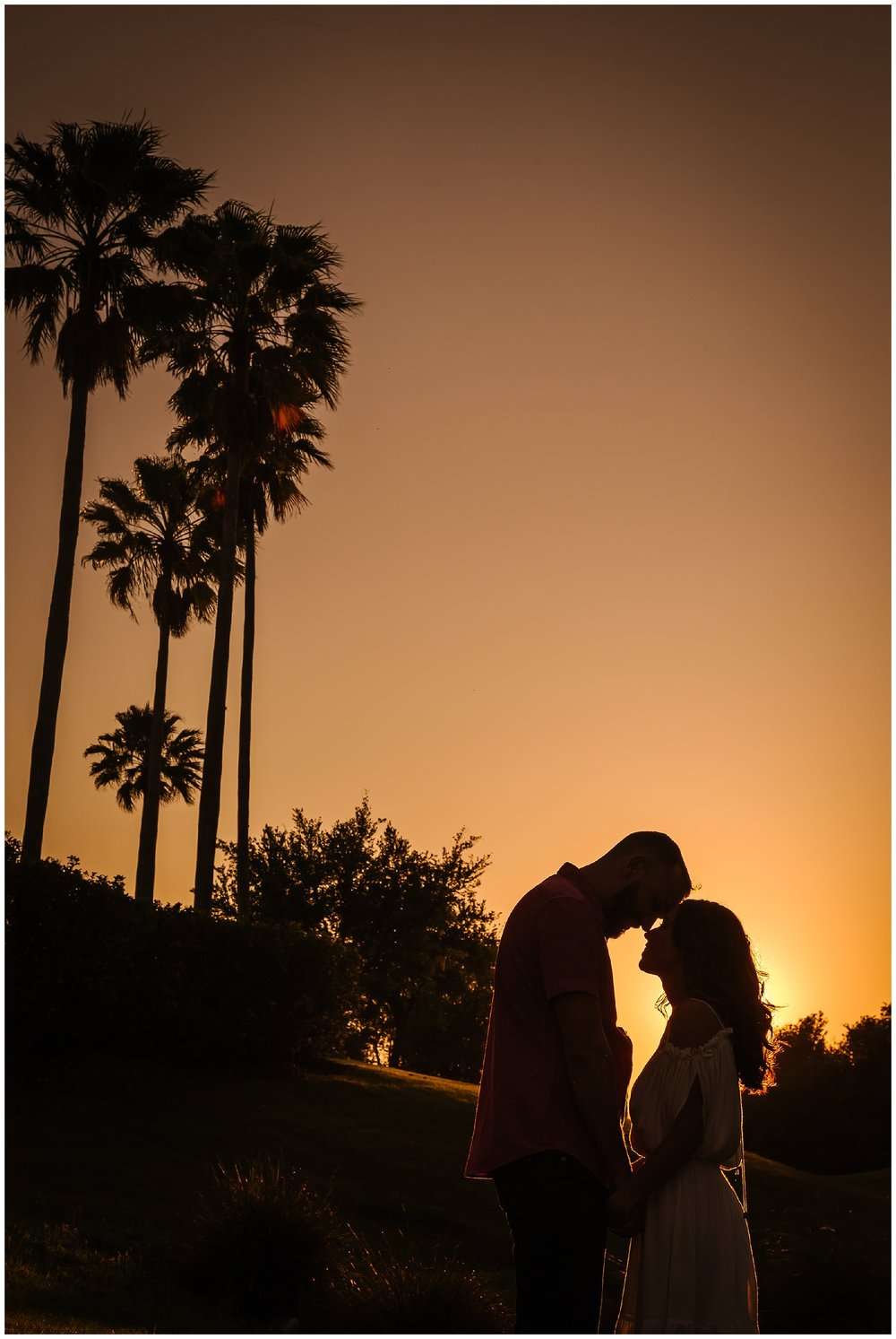 Tampa-sunset-horse-engagement session_0062.jpg