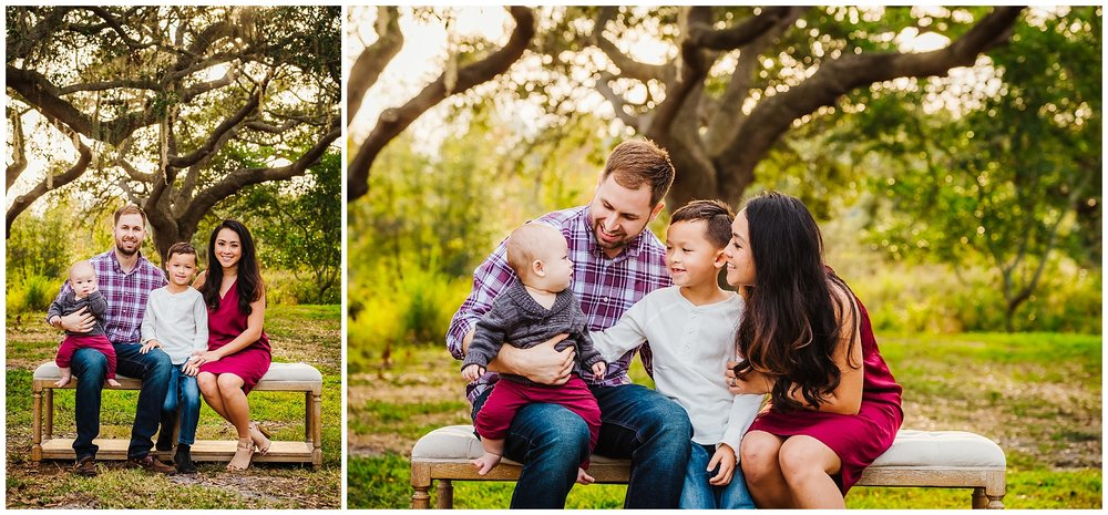 tampa-oak tree-park-holiday-gender reveal-family session_0028.jpg