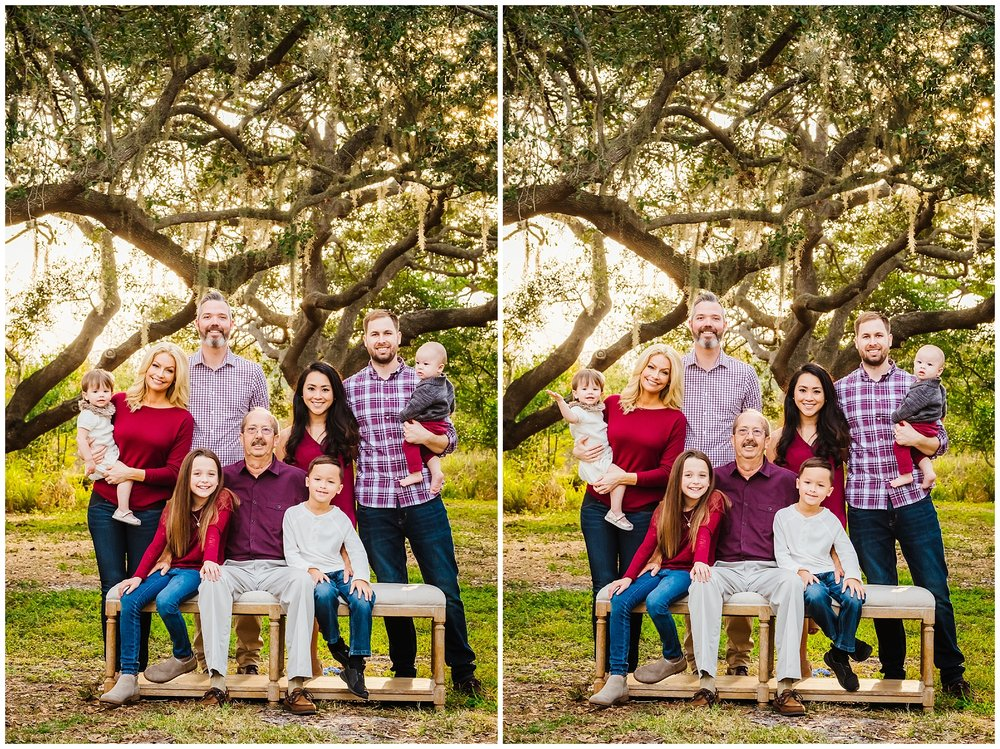tampa-oak tree-park-holiday-gender reveal-family session_0032.jpg