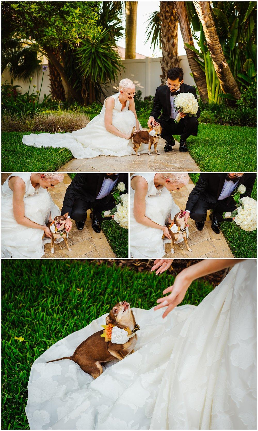tierra-verde-st-pete-florida-home-luxury-wedding-greenery-pink-pixie-bride_0032.jpg
