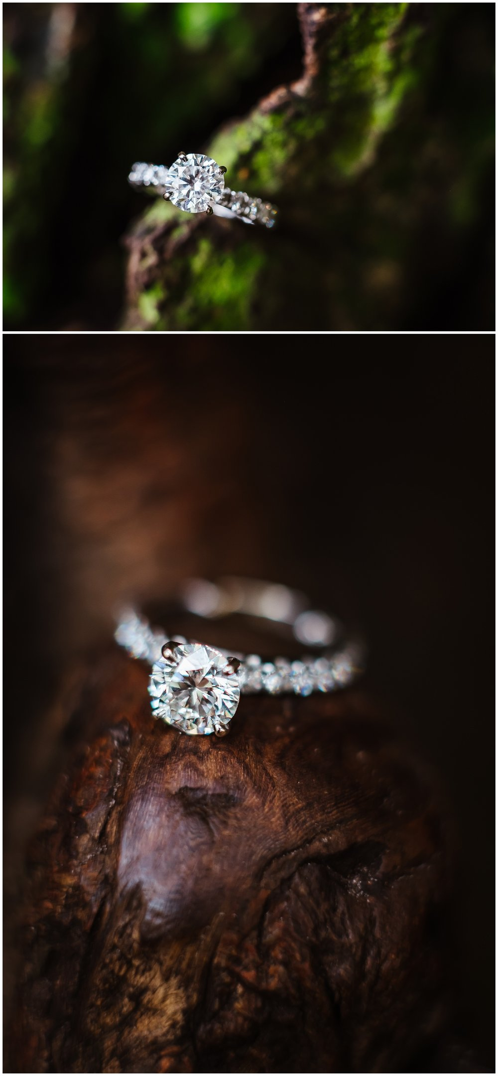 sunken-gardens-engagement-session-photos-teal-flamingos_0021.jpg