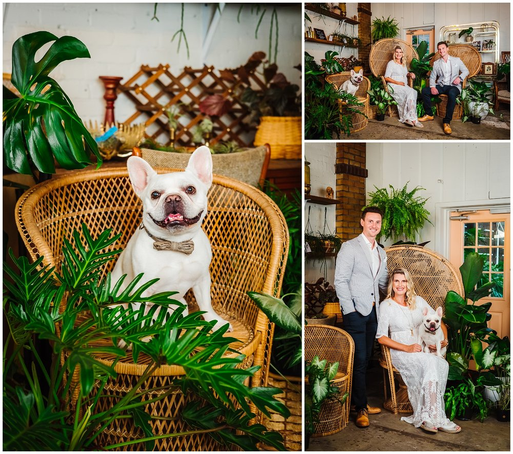 fancy-free-nursery-maternity-portraits-rainy-french-bulldog-boho-photographer-tampa_0035.jpg