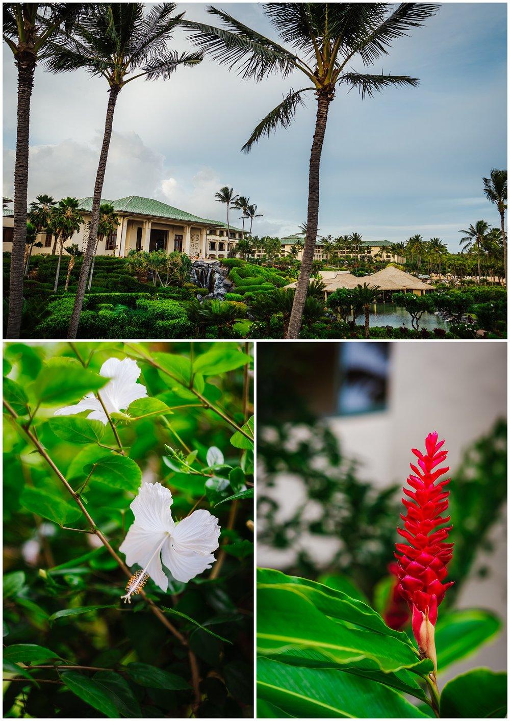 destination-wedding-hawaii-kauai-grand-hyatt-resort-napali-coast-sail_0017.jpg