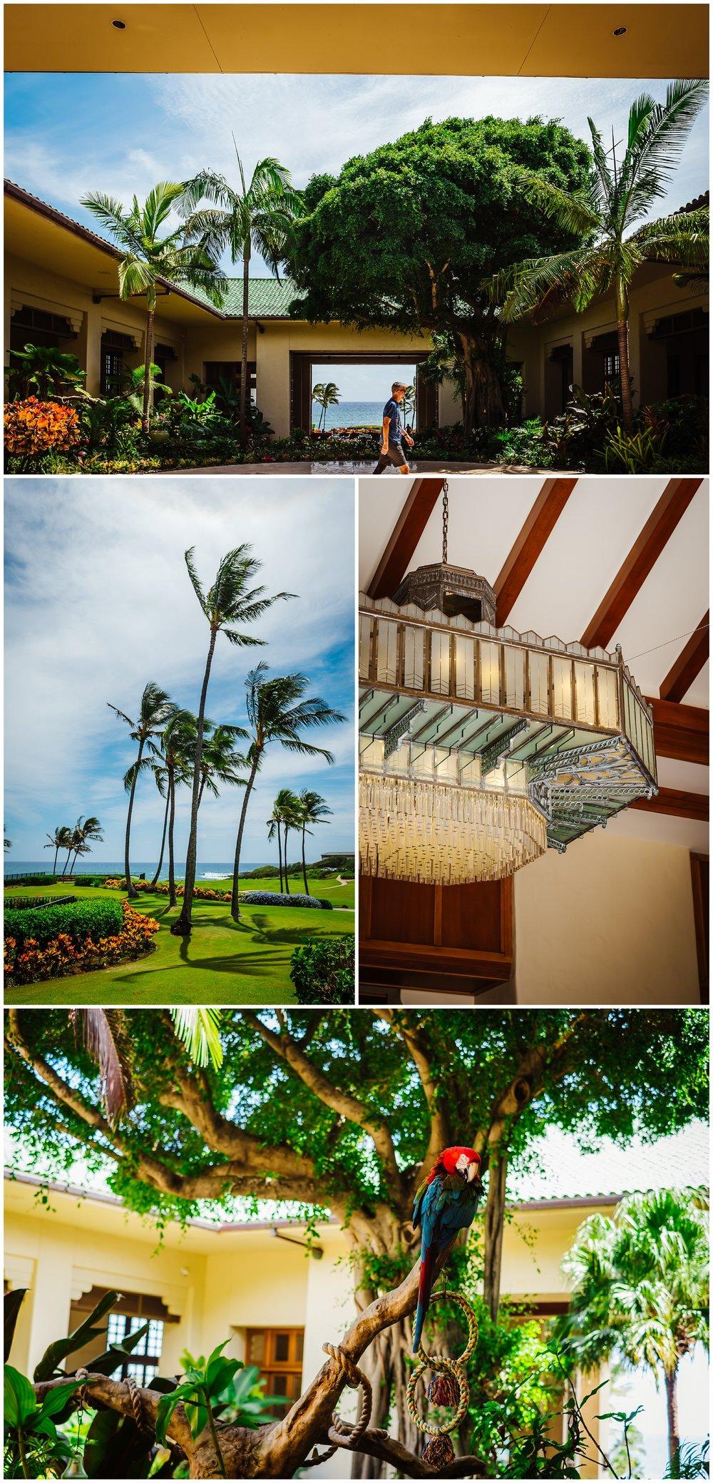 destination-wedding-hawaii-kauai-grand-hyatt-resort-napali-coast-sail_0024.jpg