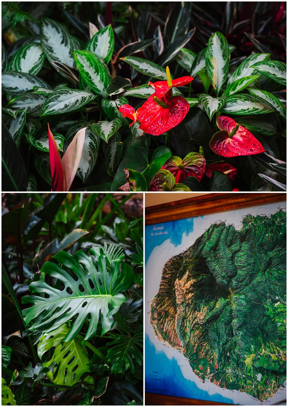 destination-wedding-hawaii-kauai-grand-hyatt-resort-napali-coast-sail_0026.jpg