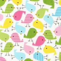 Birds in Spring