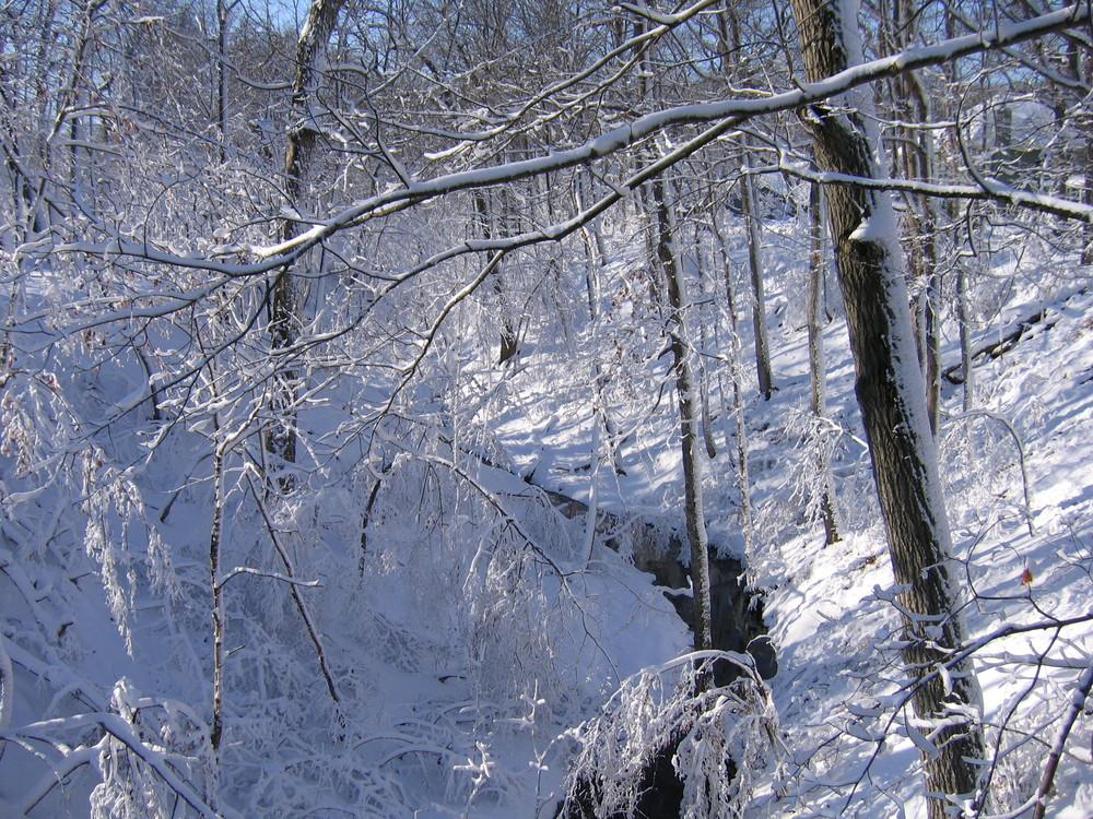 Ravine snow.JPG