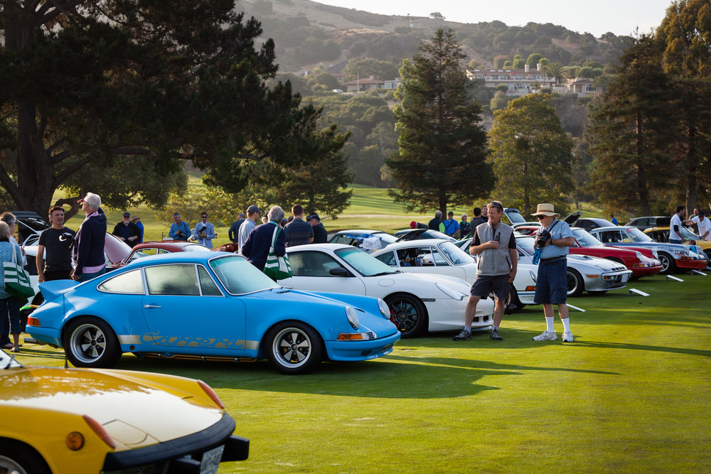 Porsches of all shapes and sizes