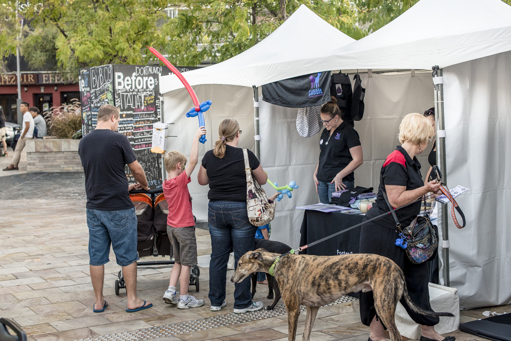 Web_The Good Dog Festival-5800-32.jpg