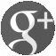 Google+Icon(1).jpg